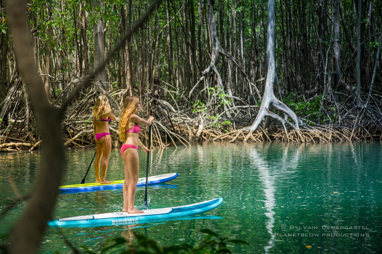 Green Miss Paddle Surf Costa Rica